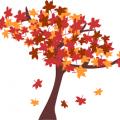 秋といえば…..